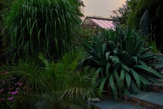 View of the green house
