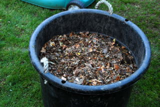 Shredded leaves ready to compost