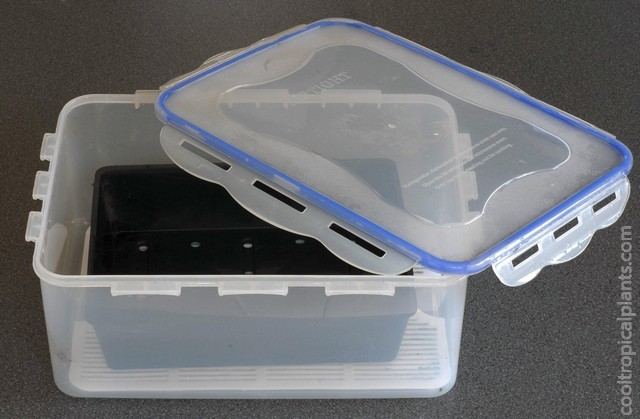 A clear plastic container with a seed tray inside.