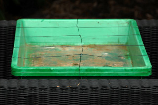 Heated propagator with wire frame attached.