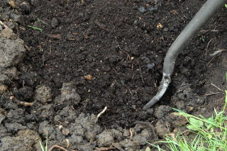 Compost is added to the sub soil