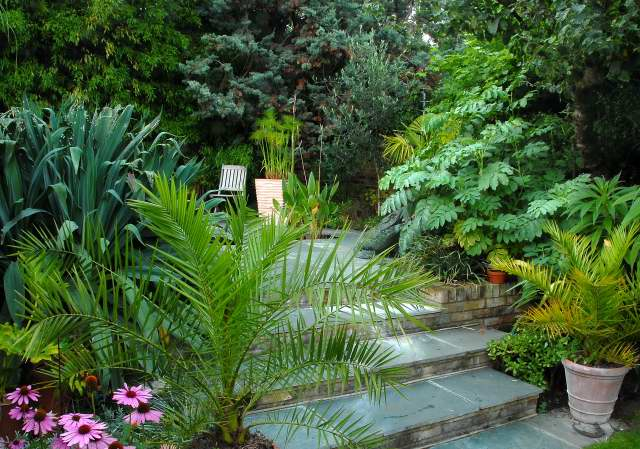 Exotic patio facing north