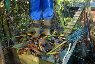 Standing on a full compost bin.