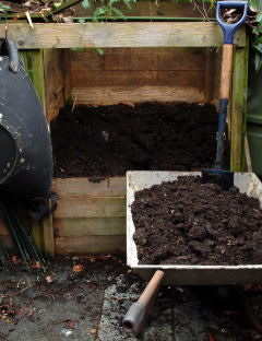 Compost in a wheel barrow
