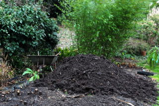 Mature compost pile awaiting use in the spring.