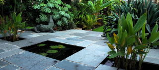 Splendid Tropical Garden Pictures With Engaging This Picture Shows A South Facing Sun Trap Patio Featuring A Formal Pond  Surrounded By Exotic Planting With Awesome Kashmir Gardens Also Roof Garden South Kensington In Addition Gardening Services Bristol And Gap The Garden As Well As Giant Connect  Garden Game Additionally Cheap Garden Border Ideas From Cooltropicalplantscom With   Engaging Tropical Garden Pictures With Awesome This Picture Shows A South Facing Sun Trap Patio Featuring A Formal Pond  Surrounded By Exotic Planting And Splendid Kashmir Gardens Also Roof Garden South Kensington In Addition Gardening Services Bristol From Cooltropicalplantscom